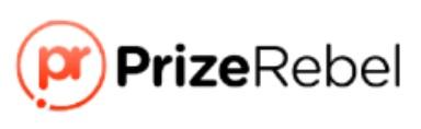prizerebel summary logo
