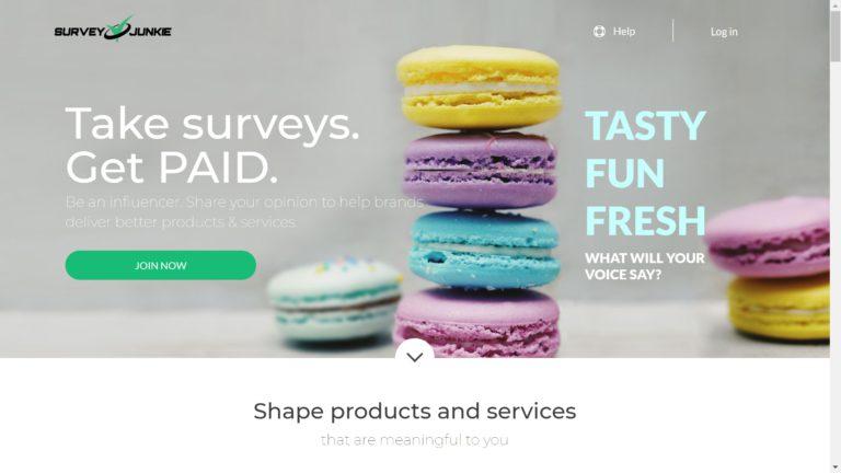 survey junkie review feature image